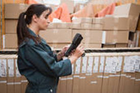 Baggage Transfer Company For Sale